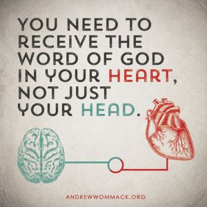 heart vs head